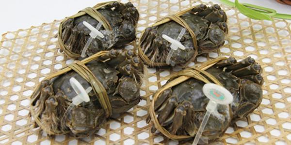 购买阳澄湖大闸蟹需注意什么?